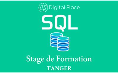 Formation SQL : Utilisation avancée